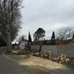 Démontage par rétention d'un peuplier de 25m à Pélissanne (Bouches du Rhône)