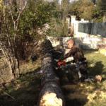 Abattage d'un pin (risque pour toiture) à Rocbaron (Var)